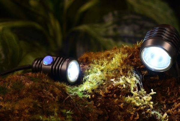 Be seen at night: some of the best front bike lights